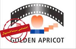زردآلوی طلایی 2